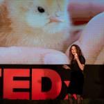 אורי שביט ב TED