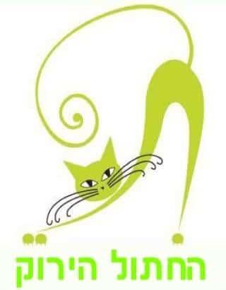החתול הירוק Green Cat