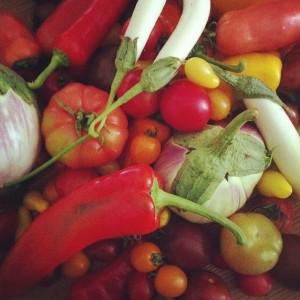 מתכונים טבעוניים עם ירקות משוגעים. תודה לעופרנים!