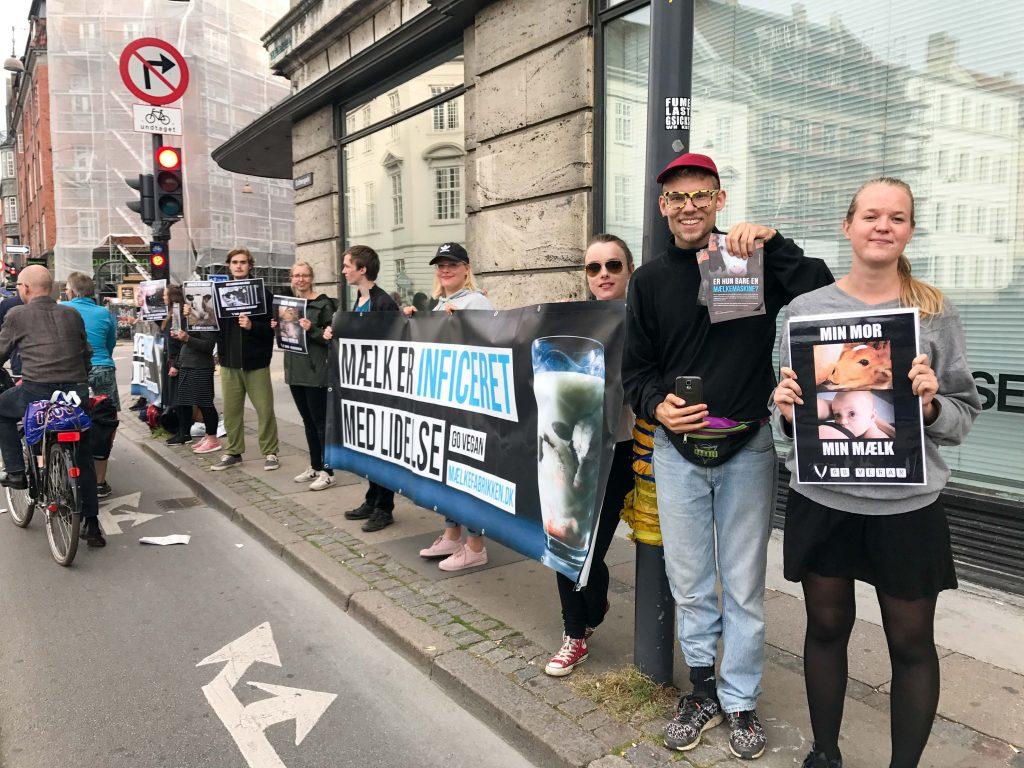 אקטיביזם בלב העיר. הפגנה מול אירוע לילדים שארגנה יצרנית החלב המובילה בדנמרק