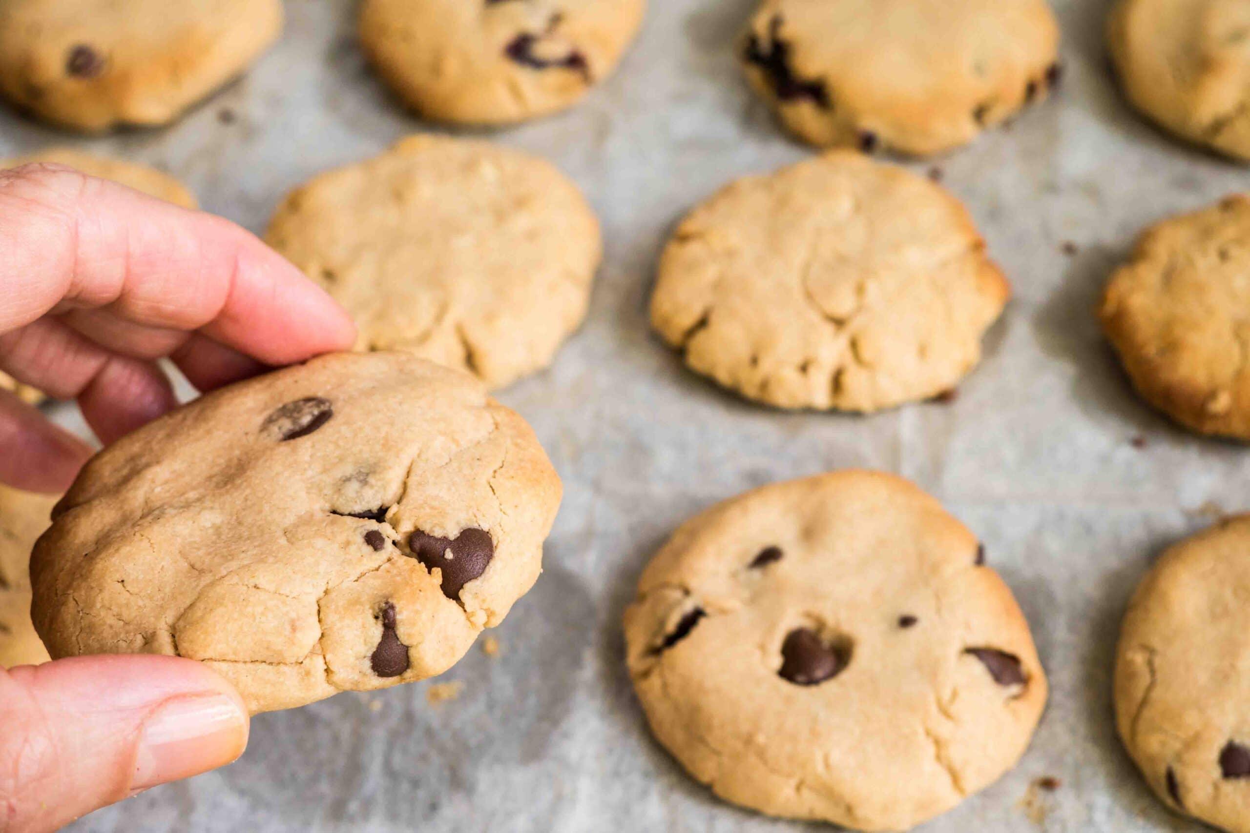 עוגיות טחינה וחמאת בוטנים