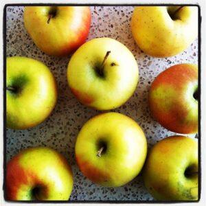 תפוחים של עץ. קטנים ומלאי עסיס וטעם