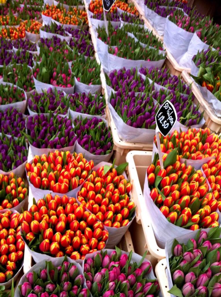 ויש כמובן את שוק הפרחים. צבעוני זה טבעוני, לא?